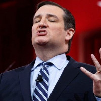 """OOPS: Ted Cruz """"likes"""" porn clip on Twitter."""