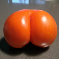 Things in the world that look like butts.
