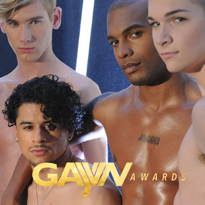 And the winners of the 2019 GayVN Awards are ...