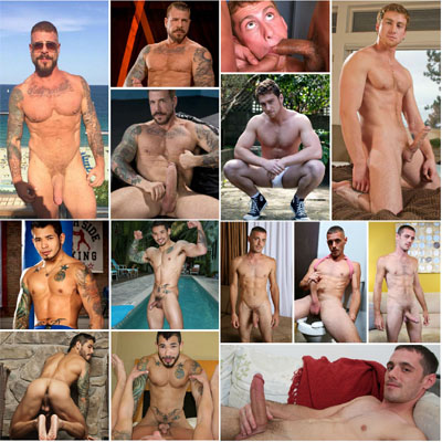 Top gay porn star searches for November